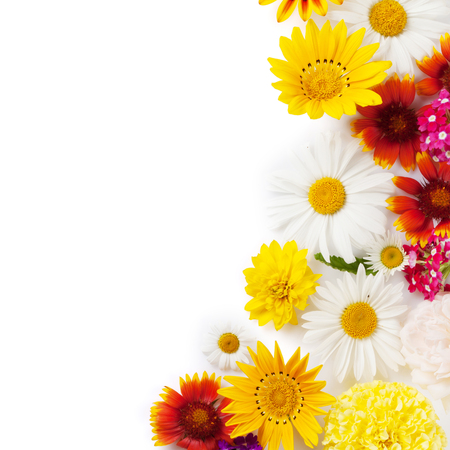 Garden flowers frame. Isolated on white background. Backdrop with copy space Stok Fotoğraf