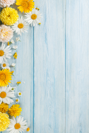 Tuinbloemen over blauwe houten lijstachtergrond. Achtergrond met kopie ruimte Stockfoto