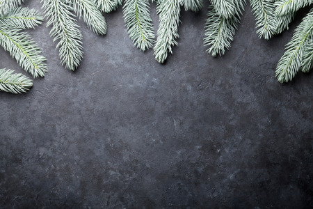 marble stone: Christmas background with fir tree. Over stone texture with copy space for text