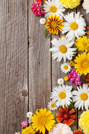 borde de flores: Garden flowers over wooden table background. Backdrop with copy space