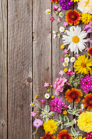 flowers garden: Garden flowers over wooden table background. Backdrop with copy space