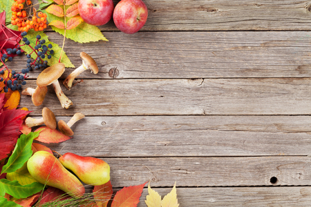the fungus: Autumn wooden background with fruits, mushrooms and colorful leaves. Top view with copyspace for your text