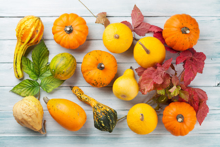 table top: Autumn pumpkins on wooden table. Top view Stock Photo