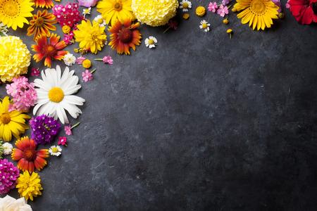 campo de flores: flores de jardín sobre fondo de la tabla de piedra. Telón de fondo con copia espacio