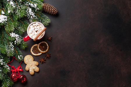 Christmas background with fir tree, hot chocolate and marshmallow. Top view with copy space Stock Photo