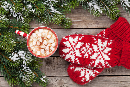 Christmas fir tree, mittens, hot chocolate and marshmallow. Top view Reklamní fotografie