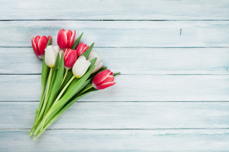 Colorful tulips bouquet on wooden background. Red and white. With space for greetings Stock Photo