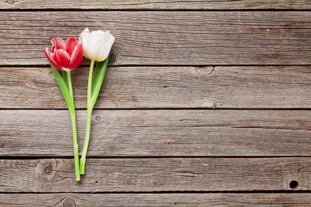 Colorful tulips on wooden background. Red and white. With space for greetings