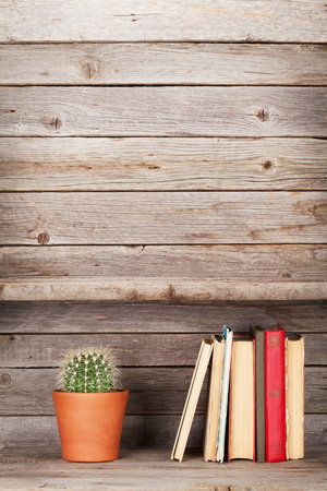 estanterias: Old books on a wooden shelf and cactus plant. With empty space Foto de archivo