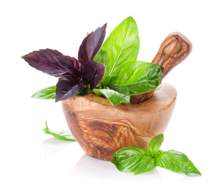 Fresh garden basil in mortar. Purple and green basil herbs. Isolated on white background