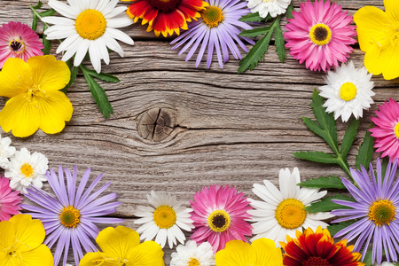 Garden flowers on wooden background. Top view with copy space Banco de Imagens - 80905513