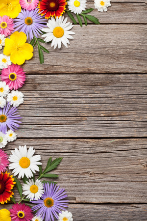 Garden flowers on wooden background. Top view with copy space