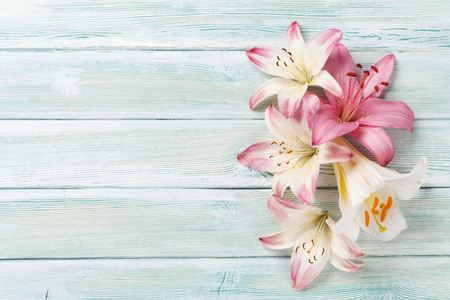 Colorful lily flowers on wooden background with space for your greetings. Top view