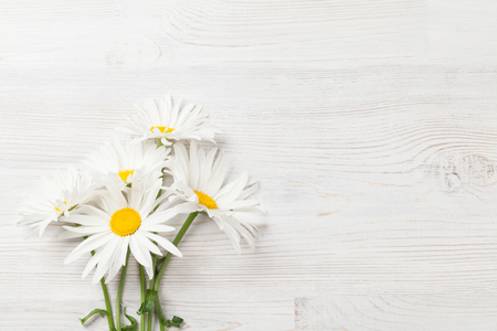 Garden chamomile flowers on wooden background. Top view with copy space Stock Photo