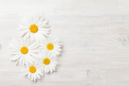 Garden chamomile flowers on wooden background. Top view with copy space Banco de Imagens