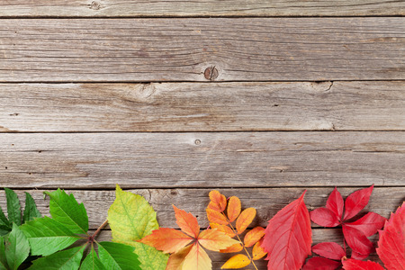 Autumn wooden background with colorful leaves. Top view with copyspace for your text