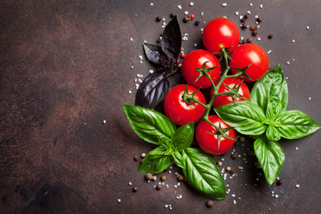 Italian food. Tomato and basil on stone table. Top view with space for your text