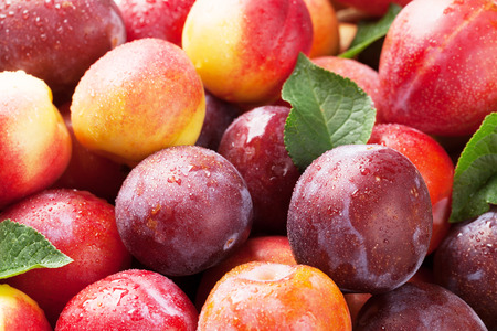 Fresh ripe peaches and plums closeup Foto de archivo