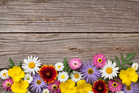 Garten Blumen auf Holzuntergrund. Draufsicht mit Kopie Raum Standard-Bild - 85164245