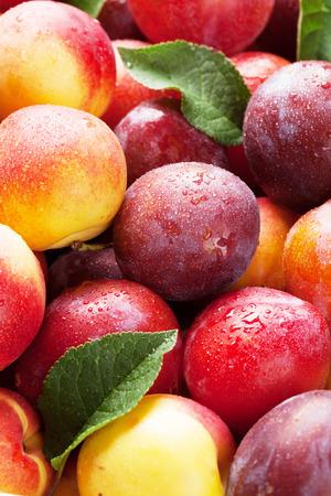 Fresh ripe peaches and plums closeup Banco de Imagens