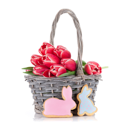 Red tulip flowers bouquet in basket and rabbit gingerbread cookies. Easter greeting card. Isolated on white background
