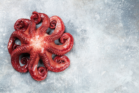 Raw octopus cooking on stone table. Seafood. Top view with space for your recipe Imagens