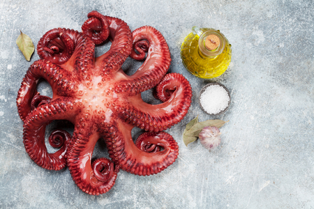 Raw octopus cooking with spices on stone table. Seafood. Top view with space for your recipe