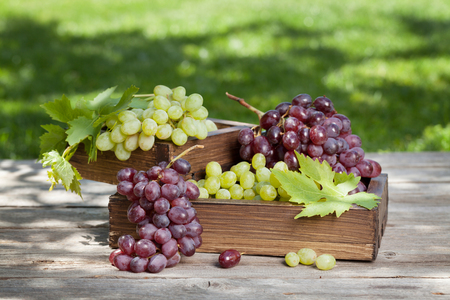 White and red grape on garden table. Outdoor still life Stock fotó