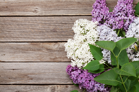 Bunte lila Blumen über hölzernem Hintergrund. Draufsicht mit Platz für Ihren Text