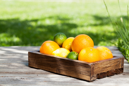 Fresh summer citrus fruits box on garden table. With space for your text Stock Photo
