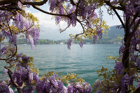 Lake Como landscape, Lombardy region, Italy, Europe