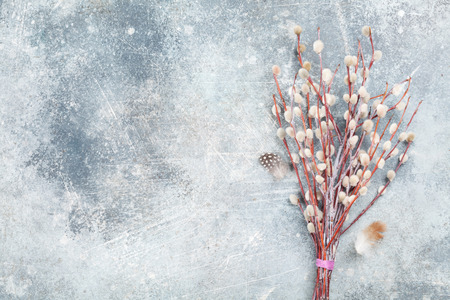 Pussy willow bouquet. Easter greeting card. Top view with space for your greetings