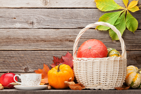 Autumn still life with pumpkins and colorful leaves. With space for your text