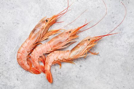 Fresh seafood. Langostino shrimps on a stone background. Top view flat lay Stockfoto