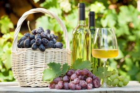 Various grapes in basket, white wine bottles and glass. Фото со стока