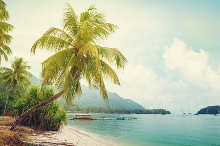 Tropischer Strand mit Palmen und hellem Sand. Sommerurlaub am Meer und Reisekonzept. Sonnig getönt