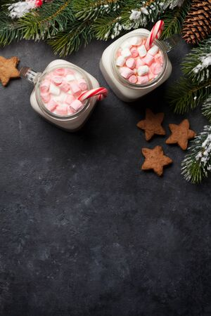 Traditional christmas cocktail with marshmallow. With gingerbread cookies on stone table. Flat lay. Top view with space for your greetings Stock Photo