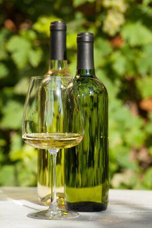 White wine bottles and wineglass on vineyard garden