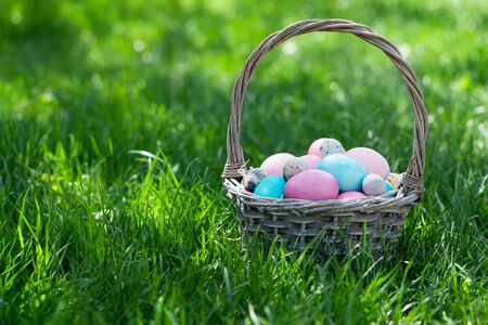 Easter eggs basket on a green grass meadow. With copy space for your greetings 免版税图像