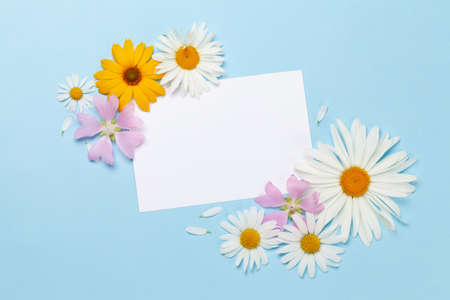 Garden flowers frame over blue background. Floral greeting card. Top view flat lay with copy space 写真素材