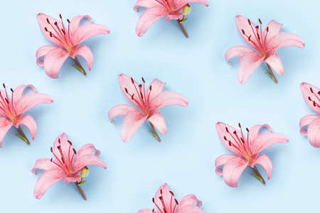 Pink lily flowers over blue background seamless texture. Top view flat lay