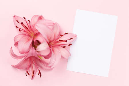 Lily flowers over pink background and blank greeting card. Top view flat lay with copy space 写真素材