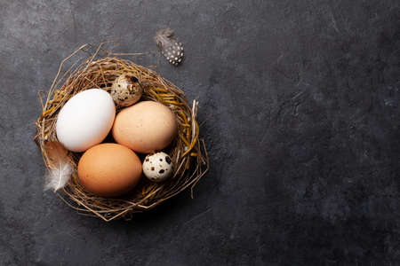 White, brown and quail eggs in nest on stone background. Easter greeting card. Top view with copy space. Flat lay