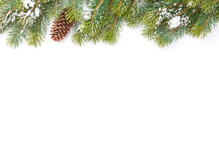 Christmas greeting card with fir tree over white background. Isolated on white. Top view flat lay with copy space for your xmas greetings