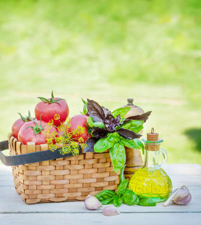 Italian cuisine ingredients. Ripe tomatoes, herbs and spices on garden table with copy space