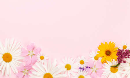 Garden flowers frame over pink background. Floral greeting card. Top view flat lay with copy space Imagens