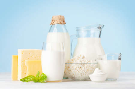 Various dairy products. Milk, cheese, cottage, sour cream. In front of blue background