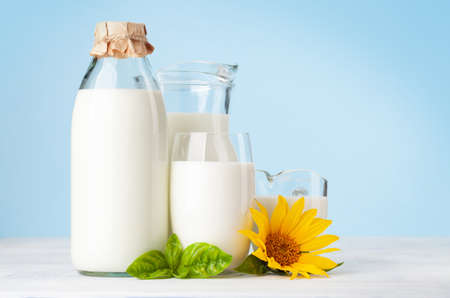 Milk in bottle, jug, glass and cup. In front of blue background. With copy space