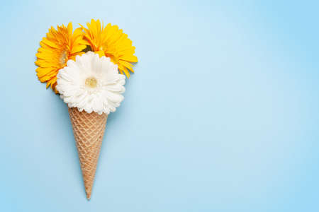 Colorful gerbera flowers in ice cream waffle cone over blue background. Top view flat lay with copy space Imagens - 162298937