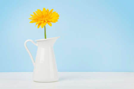 Yellow gerbera flower over blue background. With copy space Imagens - 162298968